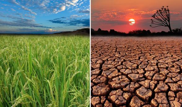 Rapporto Usa: i cambiamenti climatici causati dall'uomo