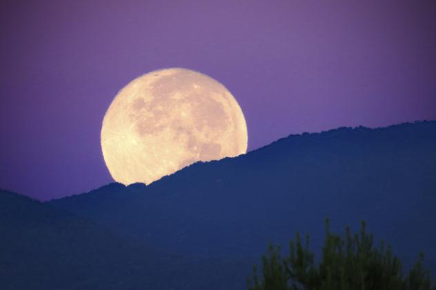Arriva la super Luna piena il giorno 14 novembre