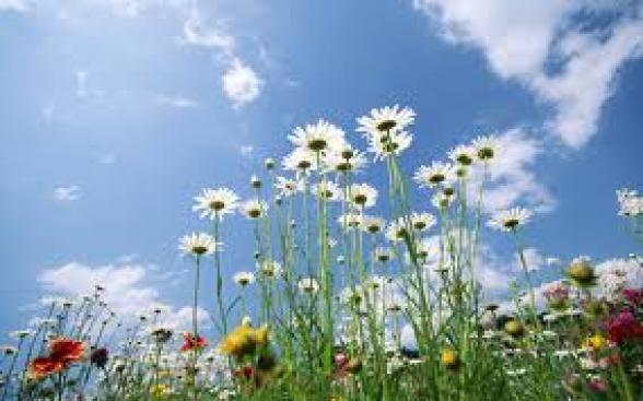 Oggi inizia la primavera meteorologica
